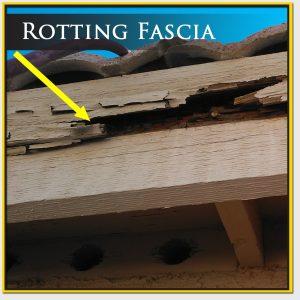 Rotting Roof Fascia
