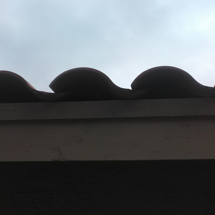Tile Roof Problem - No Bird Stop Under Tiles