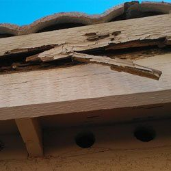 Tile Roof Problem - Rotton Fascia